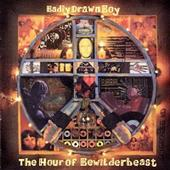 Badly Drawn Boy - The Hour Of The Bewilderbeast(image)
